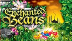 Enchanted beans1