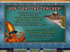Sharkschool3