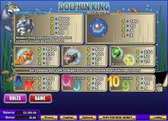 Dolphin 20king 202